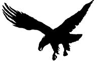 Eaglenomics